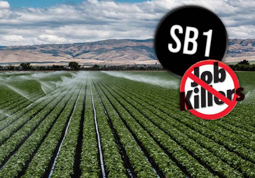 Editorial: SB 1 Is the Same Bad Legislation in a New Dress